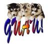 Club canino: perro feliz 2.0