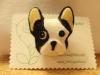 Club canino: El Lider De La Manada